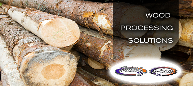 Wood Processing and Scanning Systems